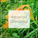 AdoptionDisrupted