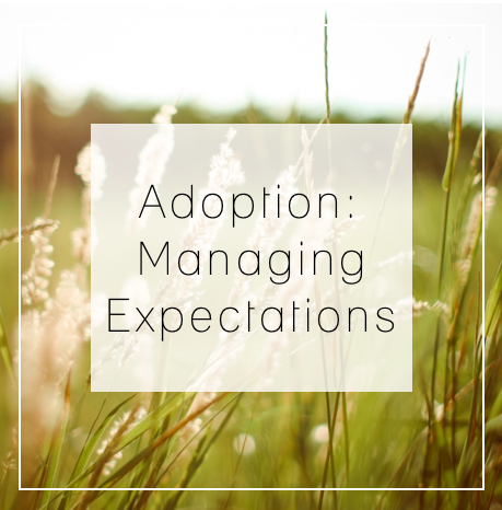 AdoptionExpectations