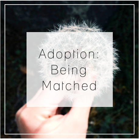 AdoptionMatch